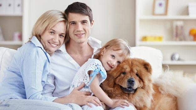 Wills & Trusts dog-young-family Direct Wills Sydenham